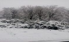 عکس هايي زیبا از طبیعت ماسال ,گيلان ,شمال